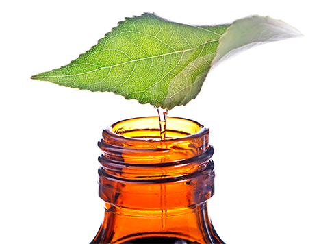 Quality Expertise Bottle with oil and leaf_Cedarome