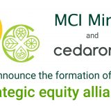 MCI Cedarome strategic equity alliance